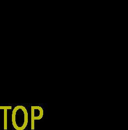 Logo - tophuman - Florian Revaz